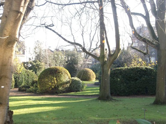 Hereford Square Garden, Brompton, London, December 2014